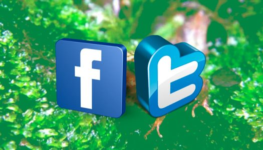 Se busca asistente de redes sociales para la SOCECOL