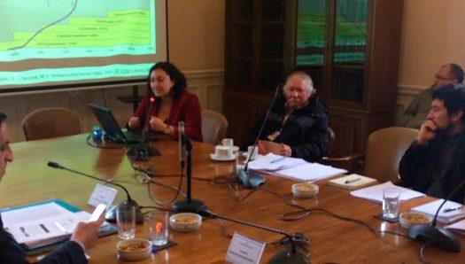 SOCECOL y la regulación de la actividad apícola en Chile