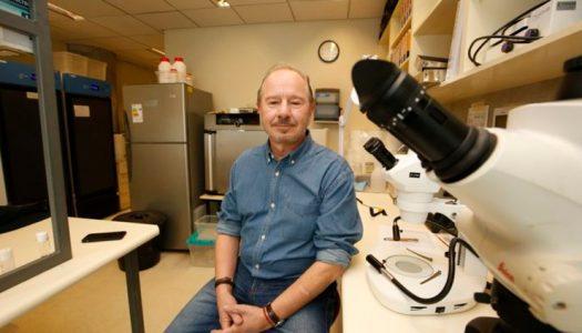 Francisco Bozinovic recibió el Premio Nacional de Ciencias Naturales 2020 por su aporte a la biología integrativa