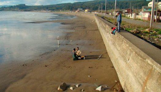 Científicos de Chile alertan sobre los efectos causados por las defensas costeras para los macroinvertebrados