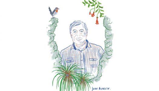Juan Armesto seleccionado para recibir el Premio Robert H. Whittaker al Ecólogo Distinguido