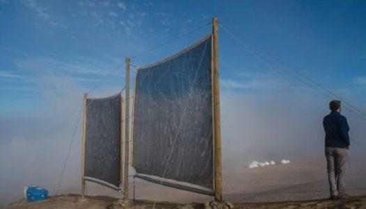 Desde Chile hasta Marruecos: La captura de niebla y su potencial frente a la crisis hídrica