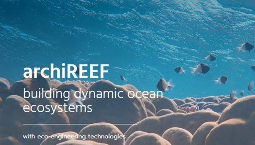 Innovadora técnica con impresión 3D podría ayudar a salvar los corales de Hong Kong